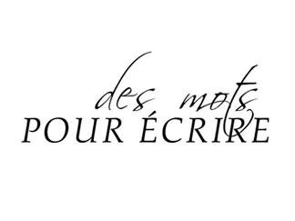 Patrick Pellerin - Écrivain public et biographe